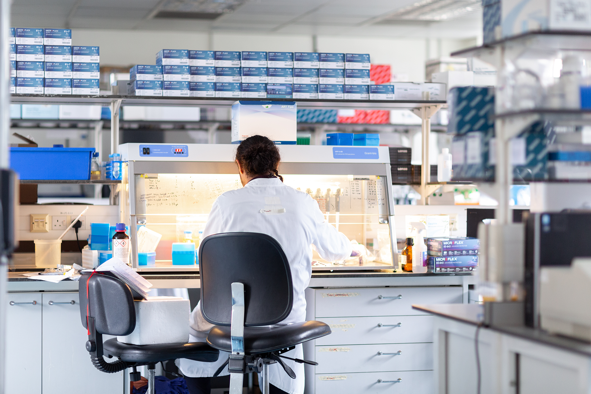Person sitting in a chair working at a lab station